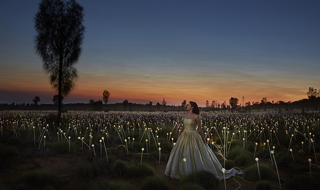 Singer Lorina Gore stands in a long white gown, at sunset, in a field covered in small lights.